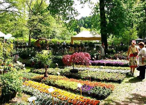 Gartenfest-Mitwitz_6